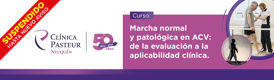 carrousel_Web_Samfyr_Curso_Marcha_Pasteur
